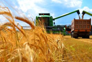 Научно-обоснованный метод работы - цель аграриев Ростовской области