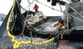 Астраханские рыбаки вновь пожаловались на необходимость оснащения Глонасс-навигаторами небольших судов