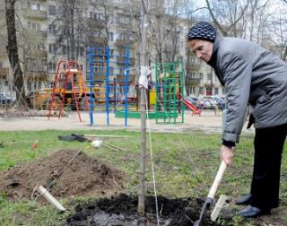 Процесс благоустройства общественных территорий проконтролировал Мурат Кумилов
