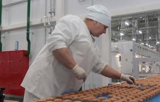 Крупный хлебобулочный комбинат начинает работать на Кубани