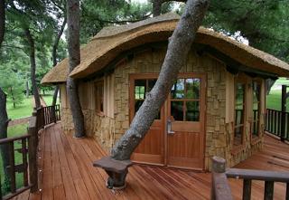 Максим Богатырев построил в Адыгее домик на дереве