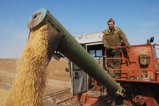 Работники сельского хозяйства получат право на надбавку к пенсии с 1 января
