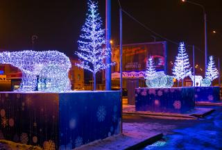 Воровство новогодних украшений продолжается в Волгограде