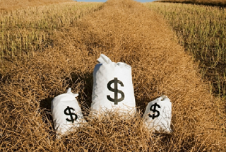 Мошенник решил разбогатеть на сельскохозяйственных субсидиях
