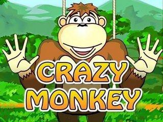 Как играть в игровой автомат Crazy Monkey бесплатно