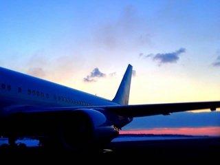 Поиск авиабилетов: дешёвые билеты для всех желающих