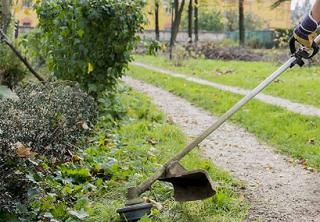 Закон требует от владельцев придомовых территорий содержать их в чистоте