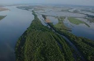 В Волгоградской области займутся обводнением Волго-Актубинской поймы