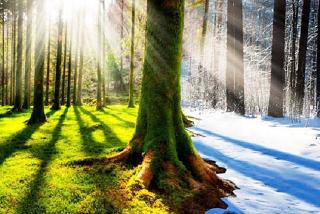 Климатическая эпоха с широтной изменилась на меридианную - рассказал профессор