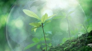 Международный экологический фестиваль «Эко-Кавказ» пройдет в Адыге