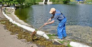 Власти Волгограда ищут того, кто очистит заливы водохранилища от брошенных рыболовами сетей