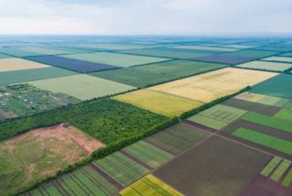Торги лишают фермеров земли, которую они обрабатывали десятилетиями