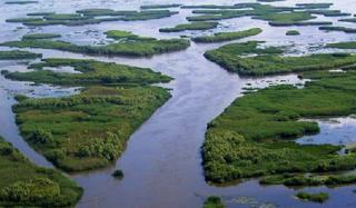 Природозащитники не позволят нарушить конвенцию в случае с дельтой реки Волга в Астрахани