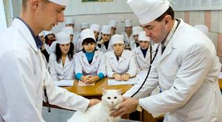 Новый факультет, открывшийся в ДГТУ, станет готовить городских ветеринаров