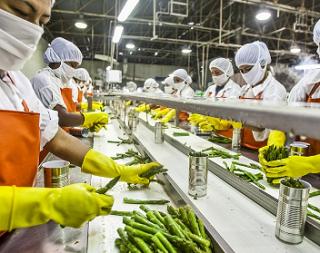 Пищевая и перерабатывающая отрасли промышленности Адыгеи наращивают объемы выпуска продукции