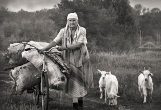 Шесть наград получили адыгские фотохудожники на международном конкурсе