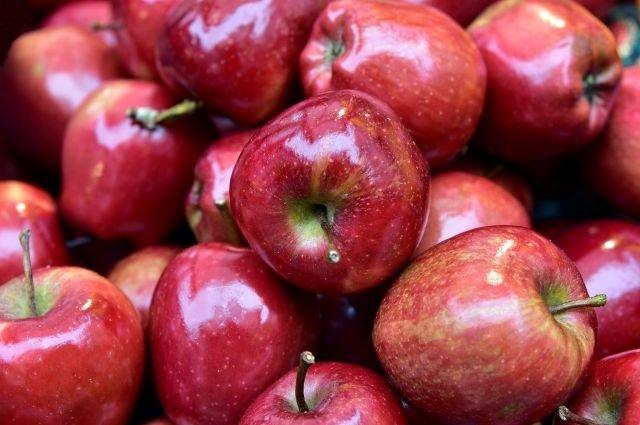 Яблоки из Адыгеи стали жертвой оговора