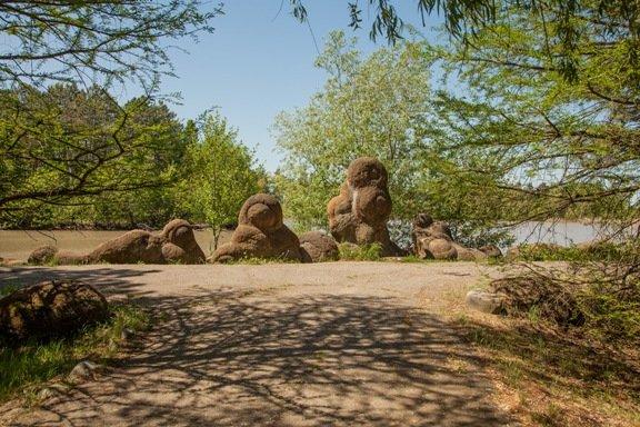 Парк «Гончарка» передали в собственность Адыгеи