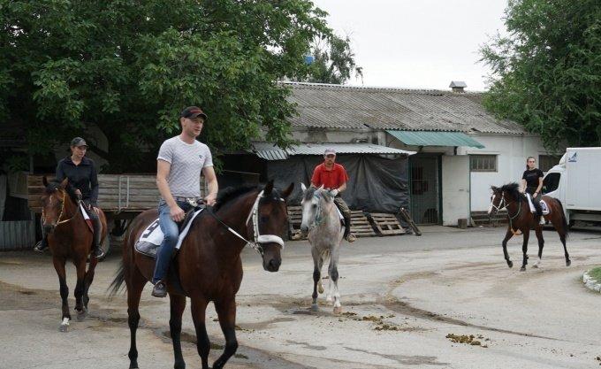 Коневладельцы добились возобновления скачек в Ростове