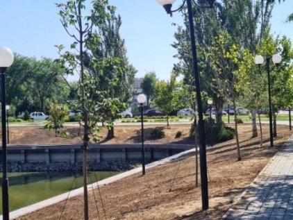 Лебединому озеру в Астрахани вернули деревья