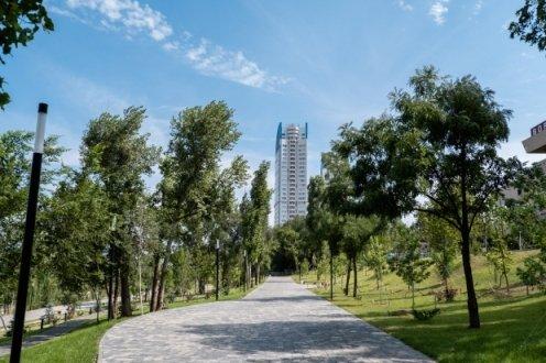 Именные деревья украсили  волгоградский  парк