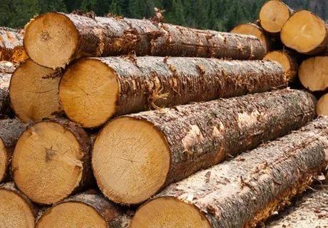 В Адыгее обсудили вопросы борьбы с незаконным оборотом древесины
