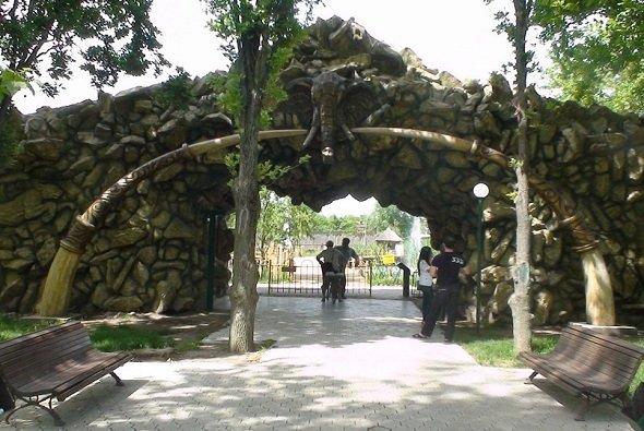 Владелец краснодарского «Сафари-парка» вернет земельные участки городу