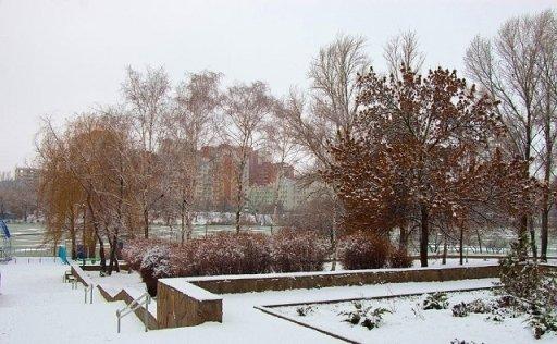 Власти Ростова оценили реконструкцию парка «Дружба» в 500 млн руб.