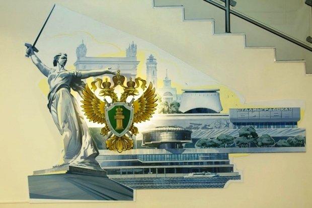 В Волгограде выявили мошенничество при поставке матрацев для инвалидов