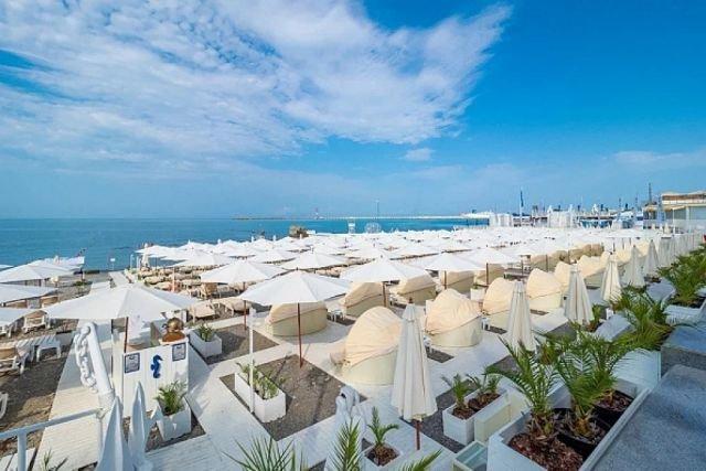 На курортах Кубани не выявили необоснованного завышения цен
