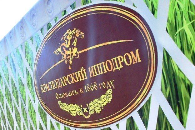 Конноспортивный клуб для молодежи заработал в Краснодаре