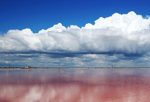 В Калмыкии туристы могут прогуляться по озеру розового цвета